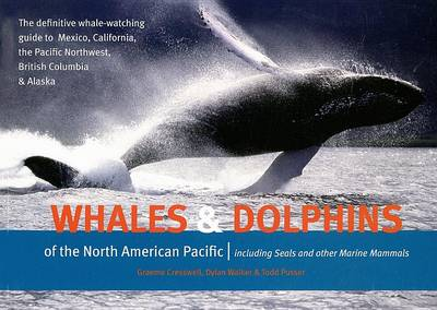 Whales and Dolphins of the North American Pacific: Including Seals and Other Marine Mammals (Paperback)