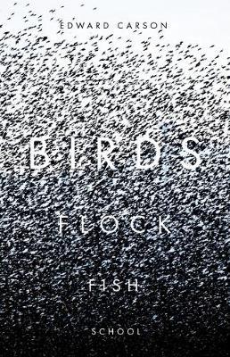 Birds Flock Fish School (Paperback)