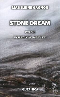 Stone Dream (Paperback)