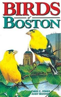 Birds of Boston (Paperback)