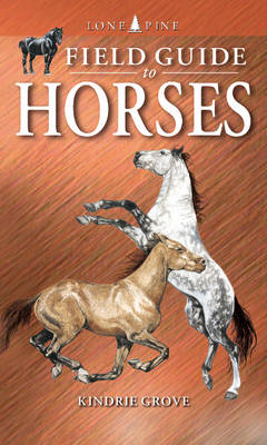 Field Guide to Horses (Paperback)