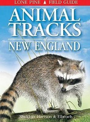 Animal Tracks of New England (Paperback)