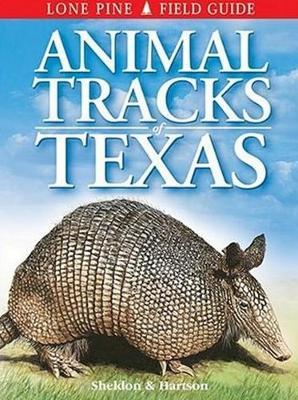 Animal Tracks of Texas (Paperback)
