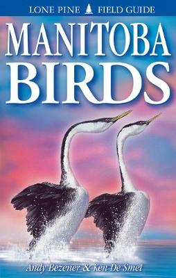Manitoba Birds (Paperback)