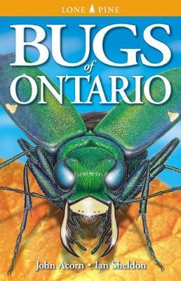Bugs of Ontario (Paperback)