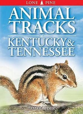 Animal Tracks of Kentucky and Tennessee (Paperback)