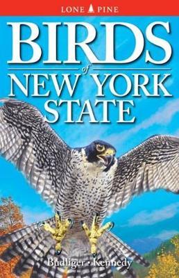 Birds of New York State (Paperback)