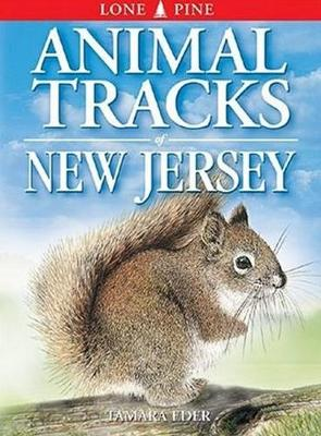 Animal Tracks of New Jersey (Paperback)
