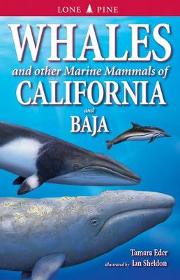 Whales and Other Marine Mammals of California and Baja (Paperback)