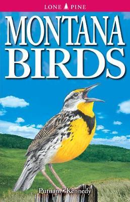 Montana Birds (Paperback)
