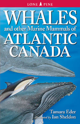 Whales and Other Marine Mammals of Atlantic Canada (Paperback)