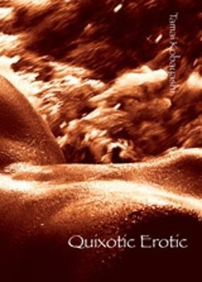 Quixotic Erotic (Paperback)