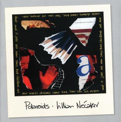Polaroids (Paperback)