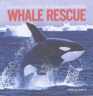 Whale Rescue: Changing the Future for Endangered Wildlife - Firefly Animal Rescue S. (Paperback)