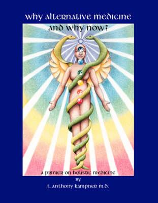 Why Alternative Medicine & Why Now?: A Primer on Holistic Medicine (Paperback)