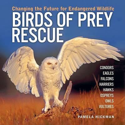 Birds of Prey Rescue (Hardback)