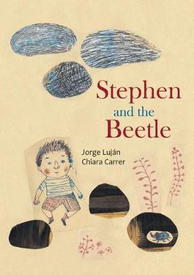 Stephen and the Beetle (Hardback)