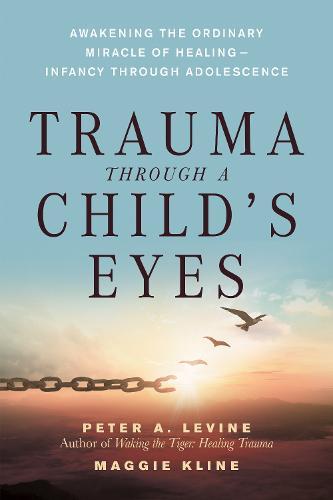 Trauma Through A Childs Eyes (Paperback)