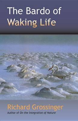 The Bardo Of Waking Life (Paperback)