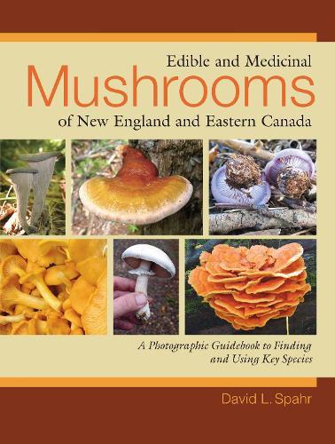 Edible And Medicinal Mushrooms (Paperback)