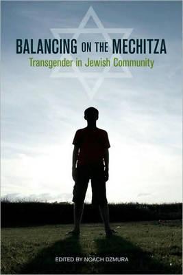 Balancing On The Mechitza (Paperback)