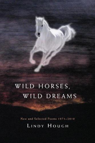 Wild Horses, Wild Dreams (Paperback)