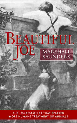 Beautiful Joe (Paperback) (Paperback)