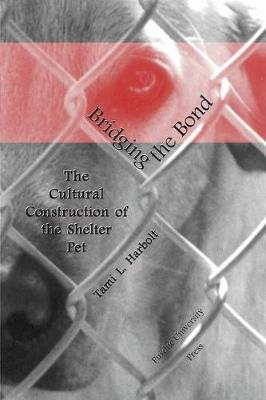 Bridging the Bond: The Cultural Construction of the Shelter Pet (Hardback)