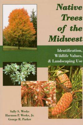 Native Trees of the Midwest: Identification, Wildlife Values, and Landscaping Use (Paperback)