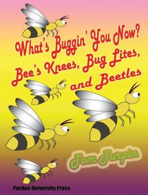 What's Buggin' You Now?: Bee's Knees, Bug Lights and Beetles (Paperback)