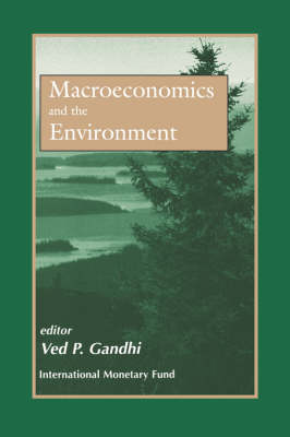 Macroeconomics and the Environment: Proceedings of a Seminar, May 1995 (Paperback)