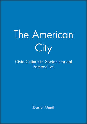 The American City: Civic Culture in Sociohistorical Perspective (Paperback)