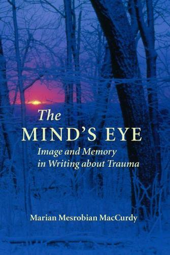 The Mind's Eye: Image and Memory in Writing About Trauma (Paperback)
