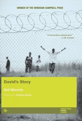 David's Story (Paperback)