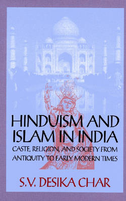 Hinduism and Islam in India: Caste, Religion and Society from Antiquity to Early Modern Times (Hardback)