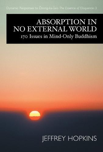 Absorption In No External World (Hardback)