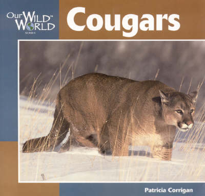 Cougars - Our Wild World (Paperback)