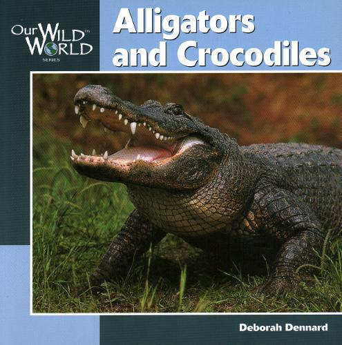 Alligators and Crocodiles - Our Wild World (Paperback)
