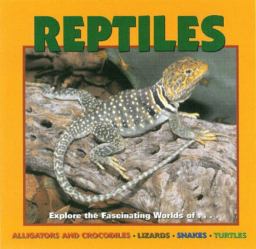Reptiles: Alligators and Crocodiles, Lizards, Snakes and Turtles (Hardback)