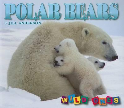 Polar Bears - Wild Ones (Paperback)