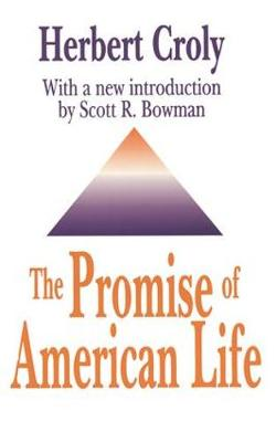 The Promise of American Life (Paperback)
