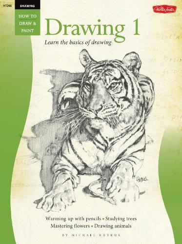 Drawing: Drawing 1: Learn the Basics of Drawing (Paperback)