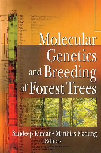 Molecular Genetics and Breeding of Forest Trees (Hardback)