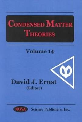 Condensed Matter Theories: Volume 14 (Hardback)