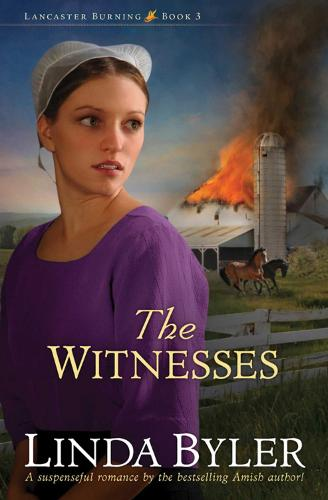 The Witnesses - Lancaster Burning (Paperback)