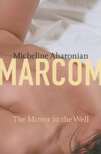 The Mirror in the Well - American Literature Series (Hardback)