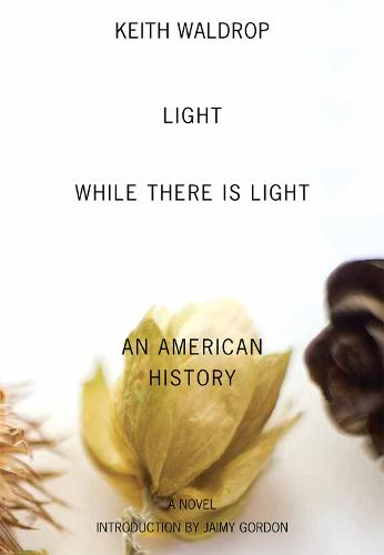Light While There is Light: An American History (Paperback)
