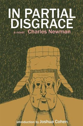In Partial Disgrace (Paperback)