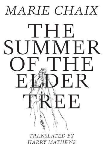 Summer of the Elder Tree (Paperback)