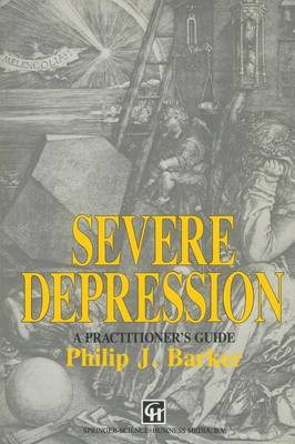 Severe Depression: A practitioner's guide (Paperback)